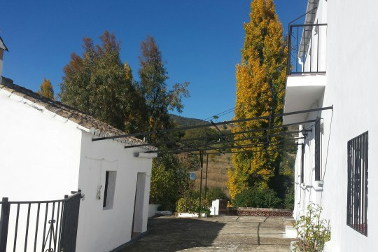 Cortijo, Pool, 6.652m2 Cultivation Land, Close to Ronda