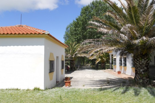 Ronda 7 min. Country House, Cottage, Pool, Tennis