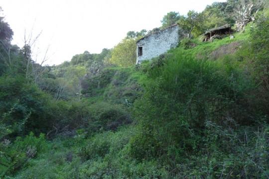 Finca, Ruin 80,64m2, Fruit, Oak, Cork Trees, Genal Valley