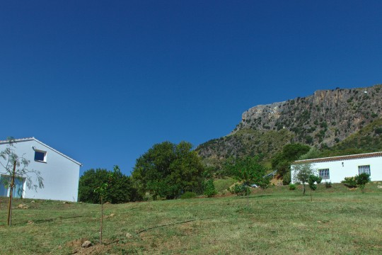 Finca,57.738m2, 2 Outbuildings 296m2, Views