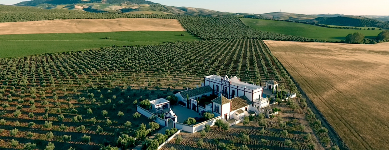 El Palacio, Cortijo, 7 suites, Hamam, Spectacular Views