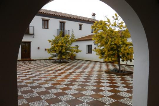 Cortijo/Rural Hotel, Pool, Vineyard, 2.5 Hectares, 2 Guest Houses