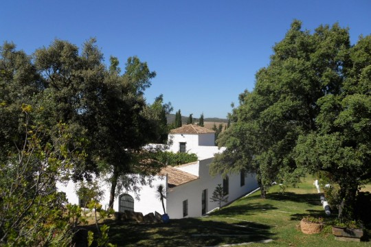 Cortijo, Pool, Guest House, Ruin and Equestrian facilities