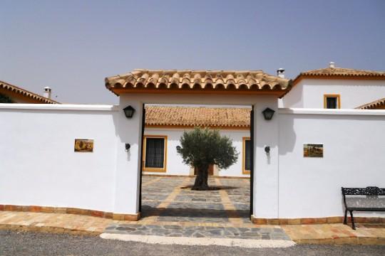 Cortijo, Pool, Guest House, Stable block, Bull-Ring