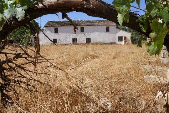 Country House/Finca Renovation, Stables, Pool, Ideal Horses