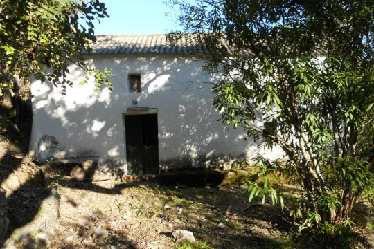 Finca/Spanish Farmhouse Renovation & 90,000m2 Land