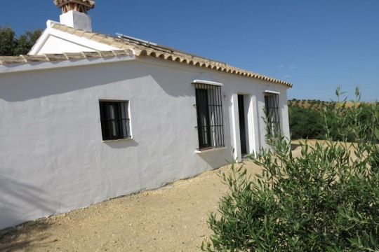 Country House, 35.000m2 Land, Olives in Production.