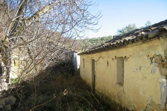 Vineyard or Equestrian – Finca Renovation, 11 Acres Land