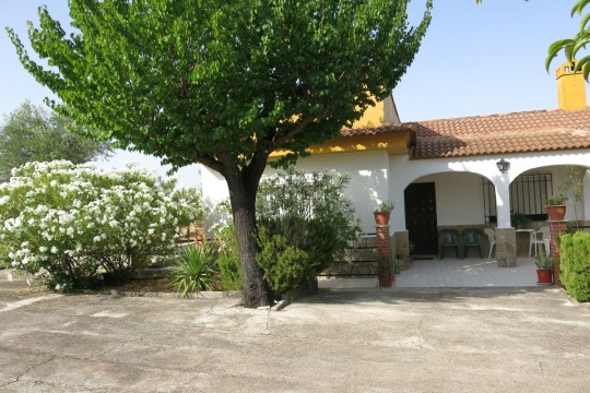 Country House/Finca, Pool, 4500m2, Olives & Fruit Trees