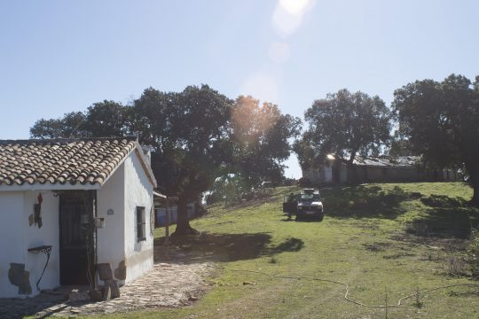 Finca, 39 Has, 3 Dwellings, Water & Elec. Good Access