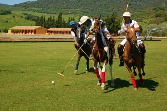 Polo Club Riding School, 15000m2 Land