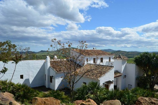 Cortijo Andaluz, Stables, Staff House, Pool, 13.6 H.